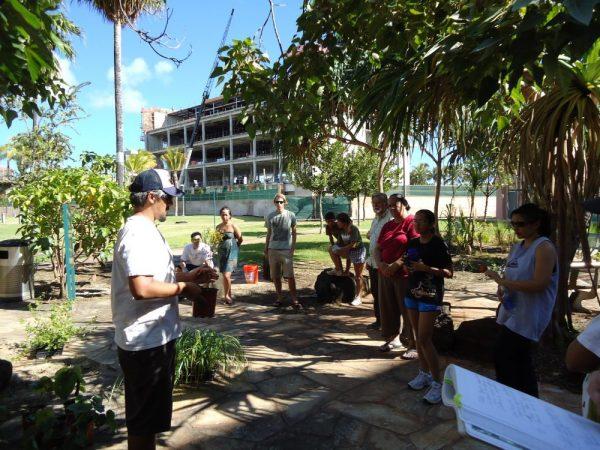 Mala Lapaʻau